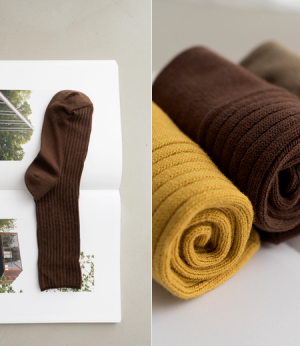 color golji cotton socks[양말AN537] 7color_free size안나앤모드